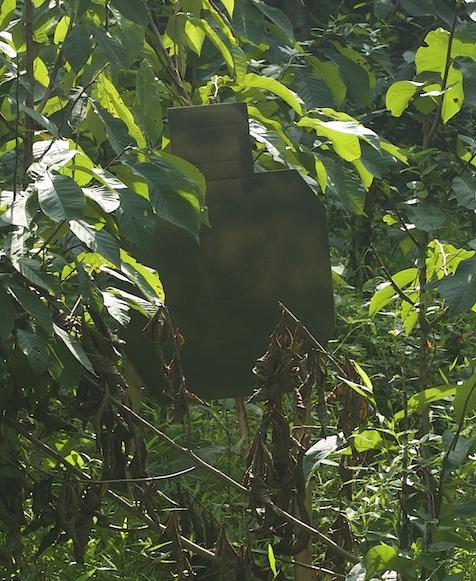 shooters in a jungle scenario