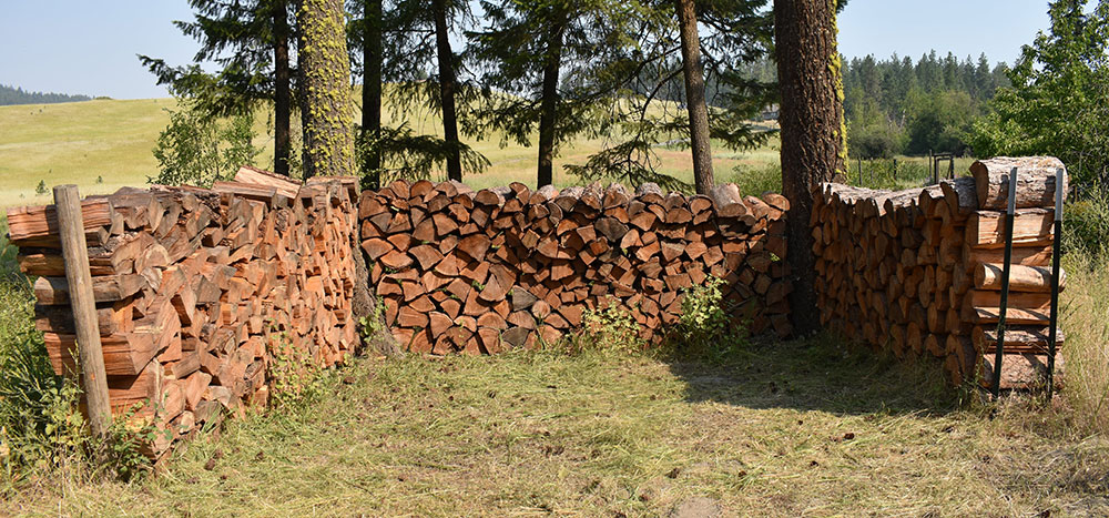 Dry seasoned firewood for the upcoming winter.