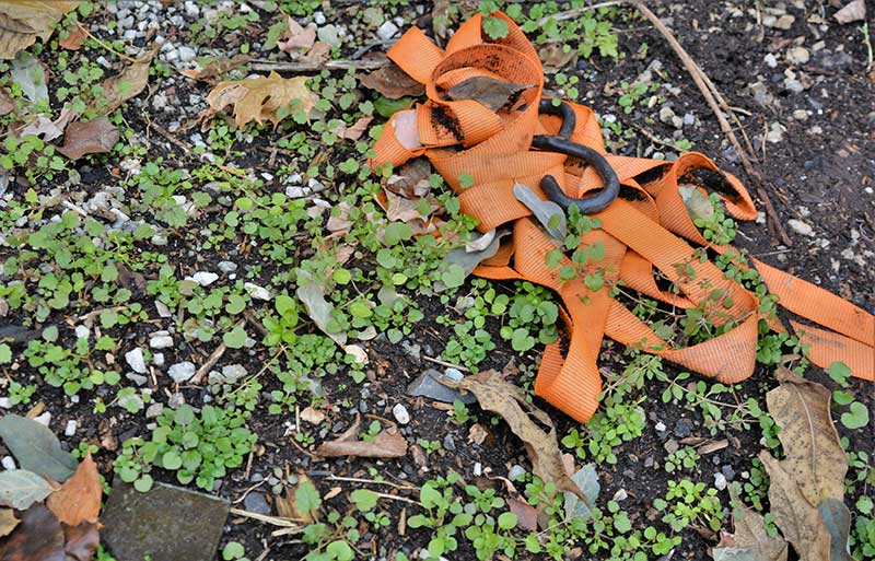 Even trash on the ground can potentially be utilized. While removing broken glass shards, author discovered a strap buried under the ground that may be very useful later.