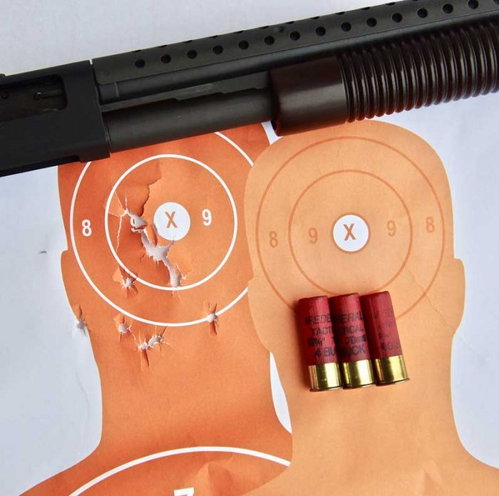 Headshot into Sonofagun hostage taker target with Federal 00 Tactical buckshot at seven yards. To be sure of avoiding the hostage, aiming point was slightly left of eye/nose triangle.