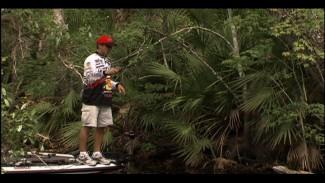 Sight Fishing Success Techniques