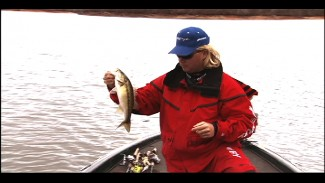 Bass Fishing After a Cold Front