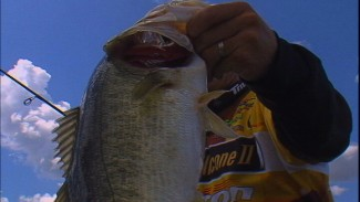 Best Anglers of 2009