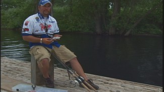 Where Should I use a Swimbait when Fishing for Bass?