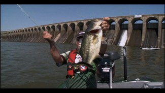 Topwater Bass Fishing on Pickwick Lake
