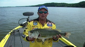 Bass Fishing on Kentucky Lake