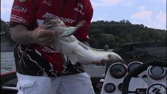 John Crews Catches a Huge Bass