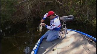 Fishing During Cold Fronts