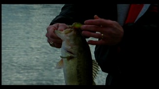 Tips for Early Spring Bass Fishing