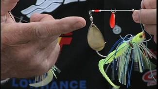 Fishing Spinnerbaits