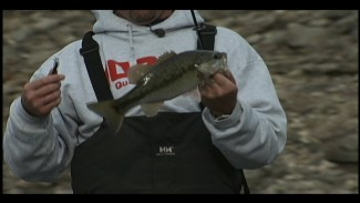 Learn How to Fish Bass like Jeff Kriet | Bassmaster