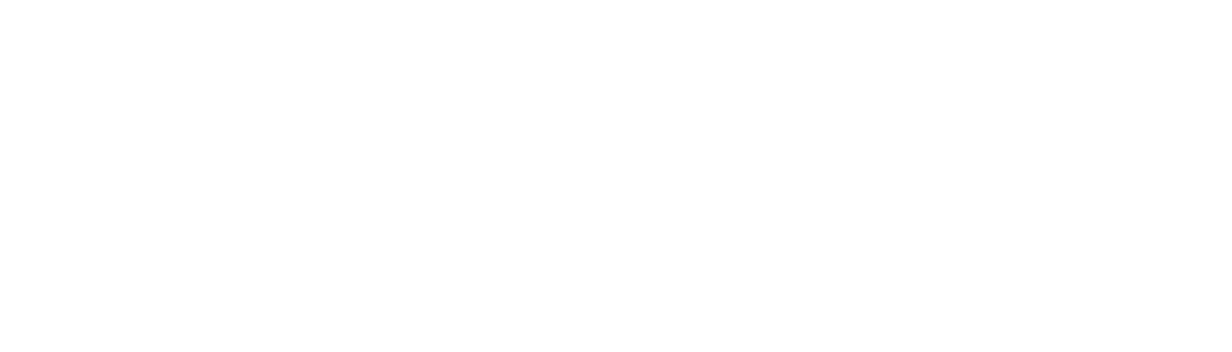 National Bowling Academy Logo
