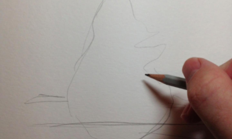 drawing pine tree