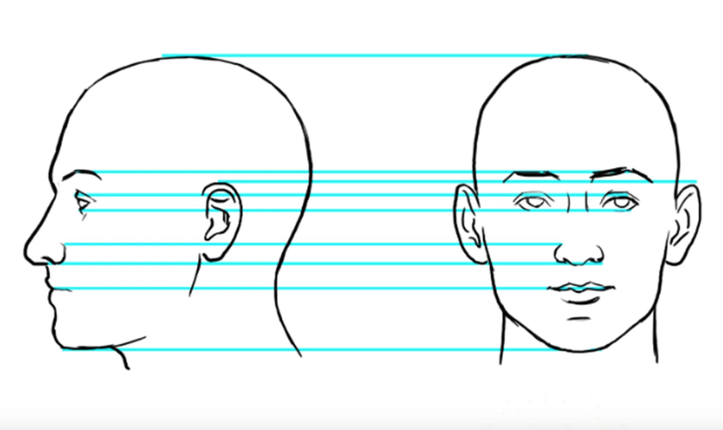 drawing faces diagram