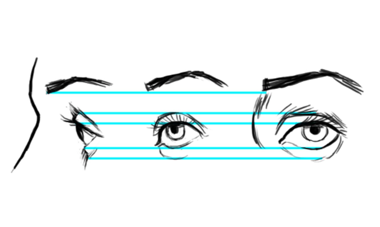 drawing eyes diagram