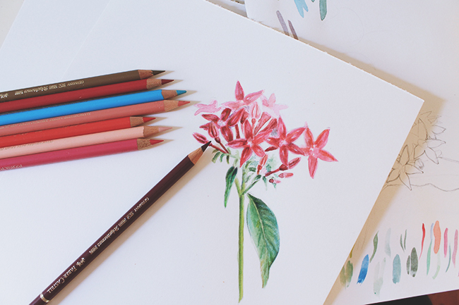 mixed media flowers drawing