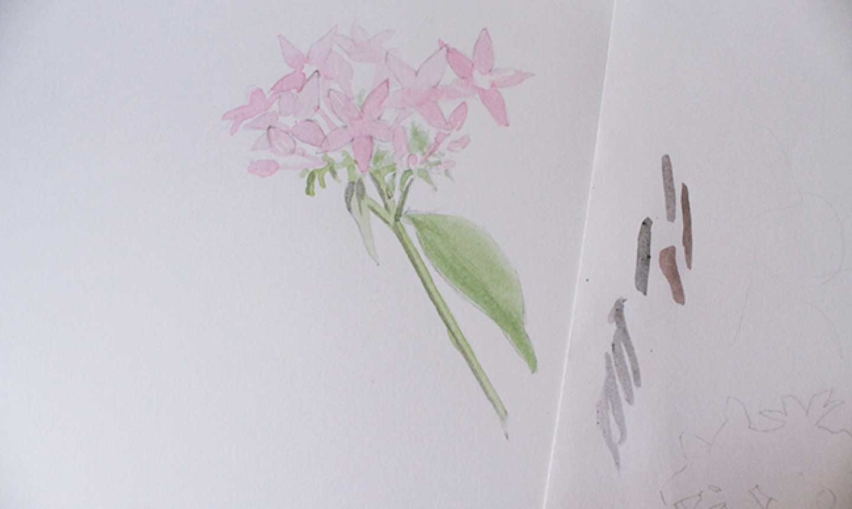 layering watercolor bouquet