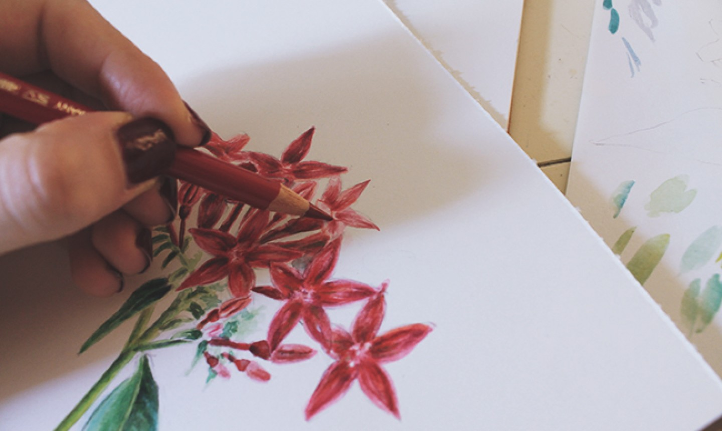 colored pencil flowers