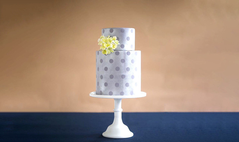 shimmer silver spot cake