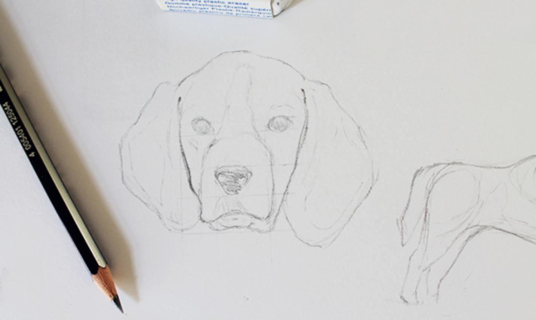 dog drawing outline