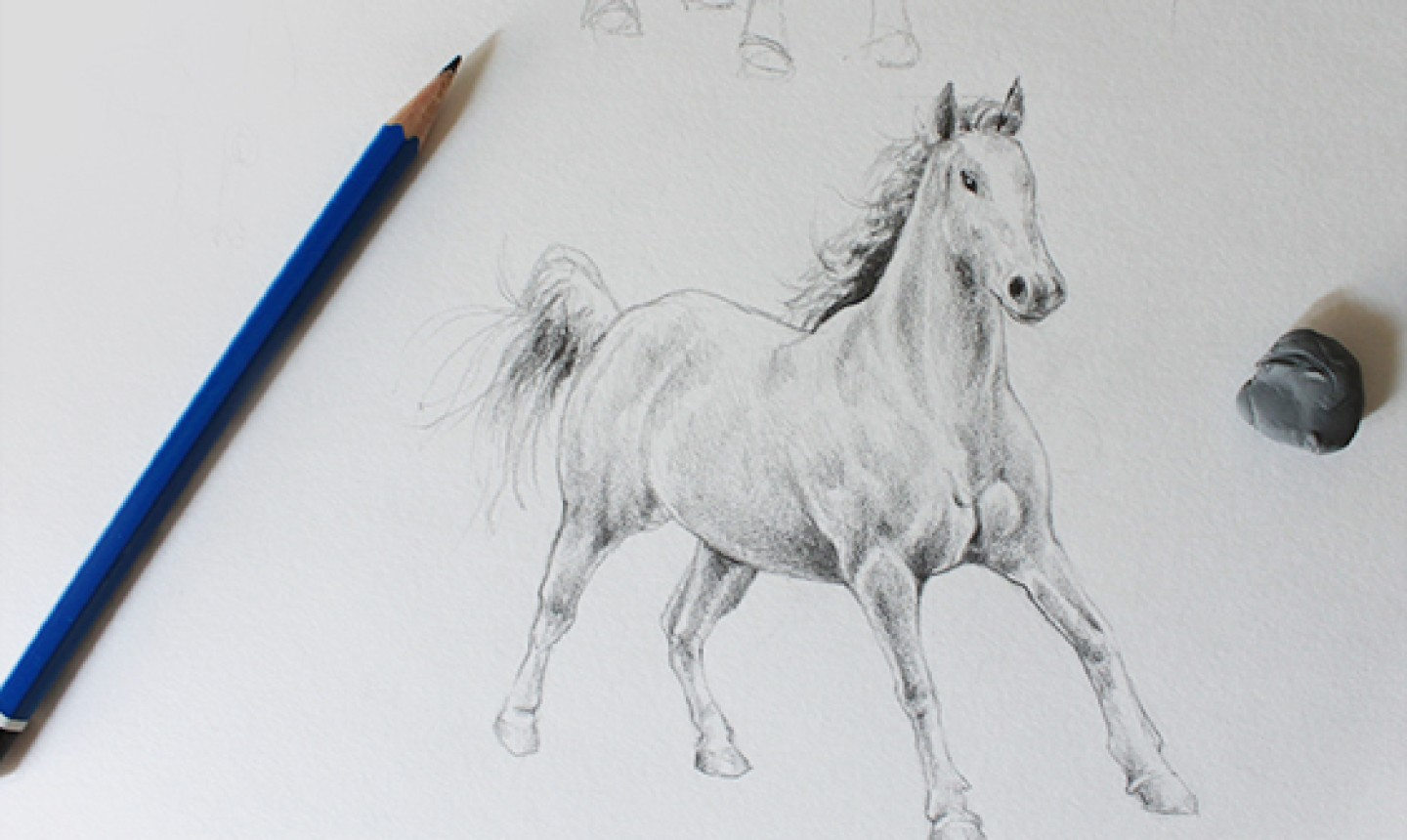 graphite horse drawing