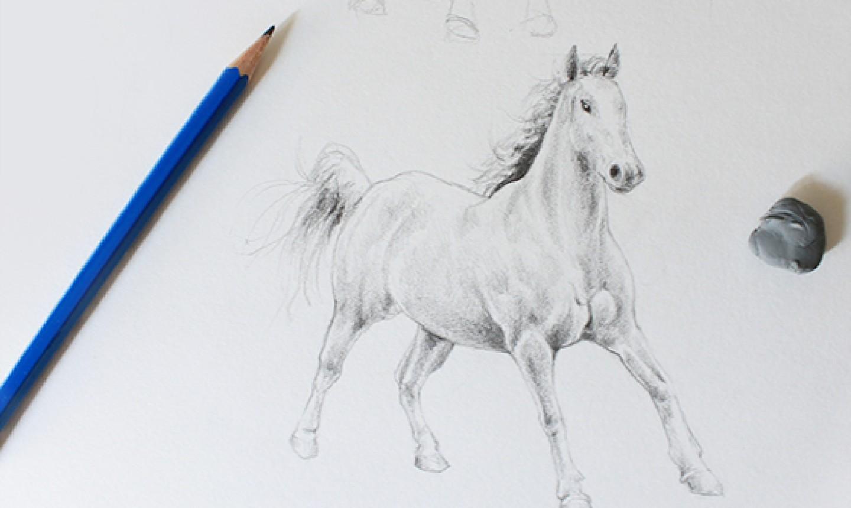 making darker shading on horse drawing