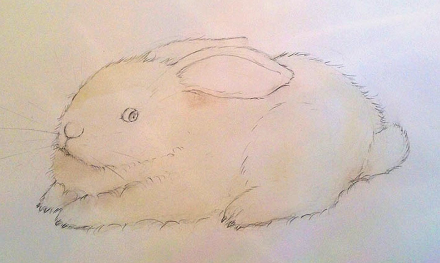 bunny first watercolor wash