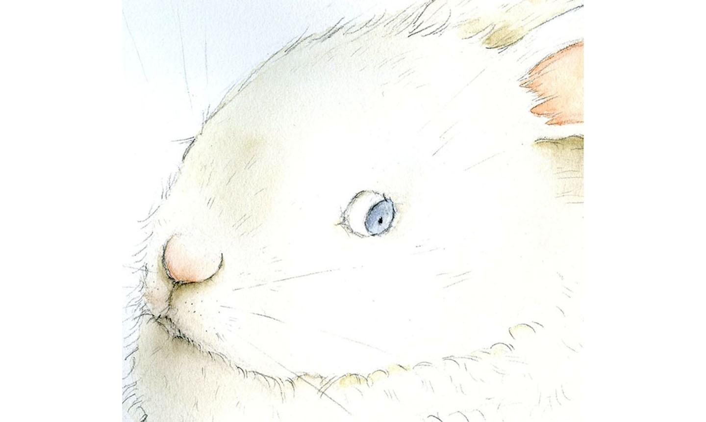 watercolor bunny eye