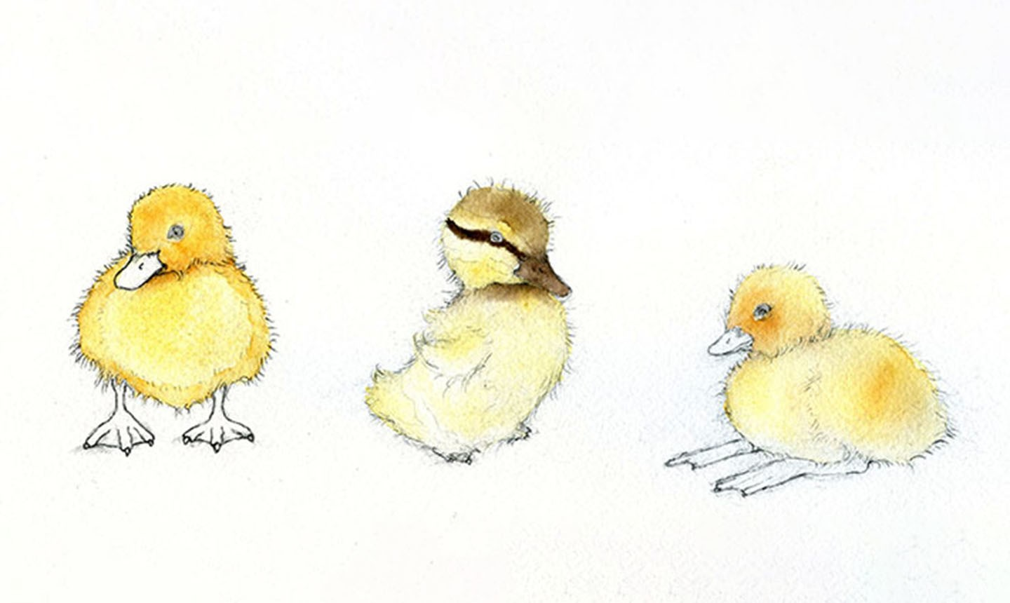 shading watercolor ducklings