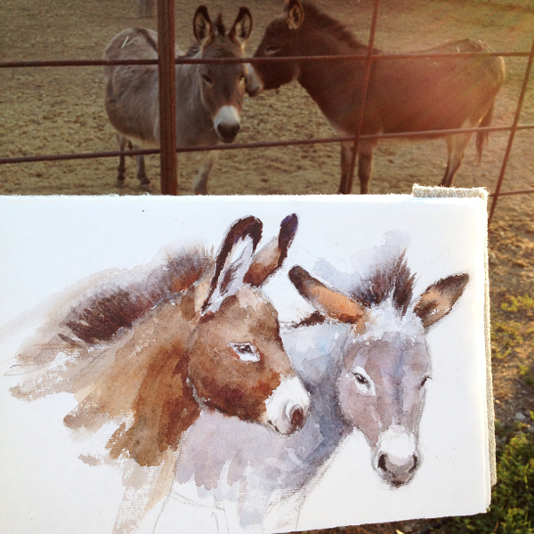 donkey watercolor sketch