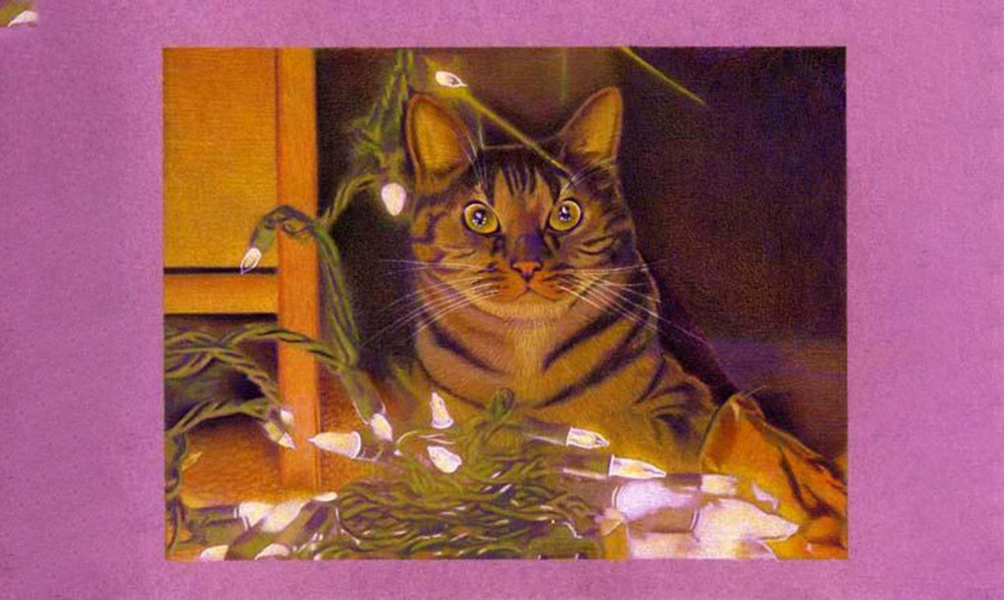 cat with holiday lights drawing