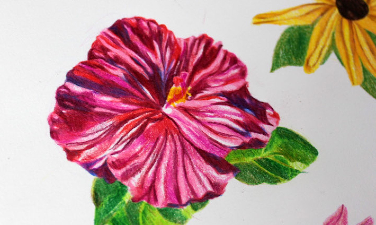 blending colored pencil flower