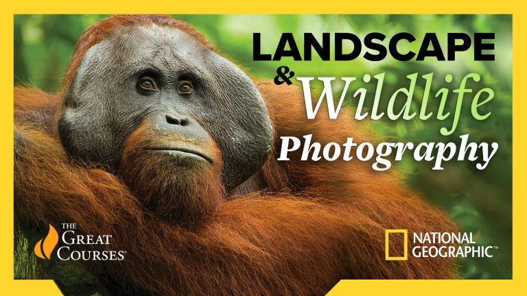 National Geographic Guide to Landscape & Wildlife Photography