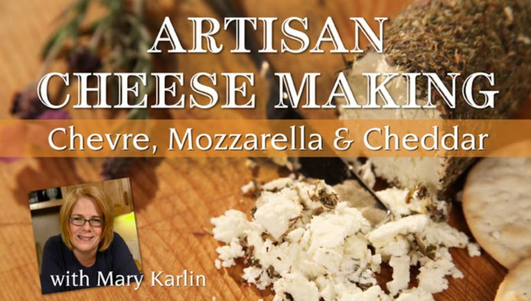 Artisan Cheese Making: Chevre, Mozzarella & Cheddar