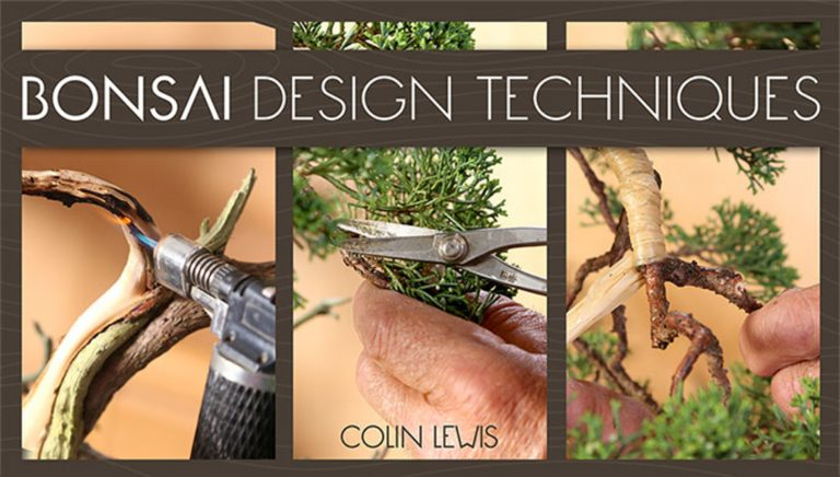 Bonsai Design Techniques