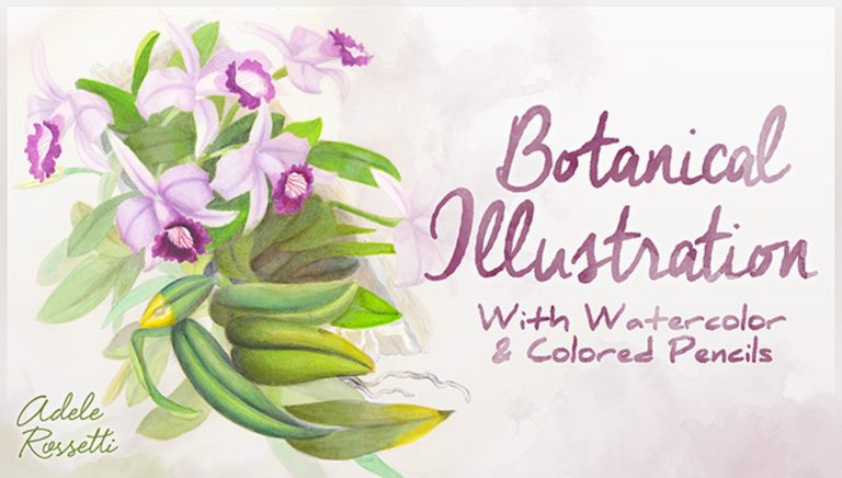 Botanical Illustration: With Watercolor & Colored Pencils