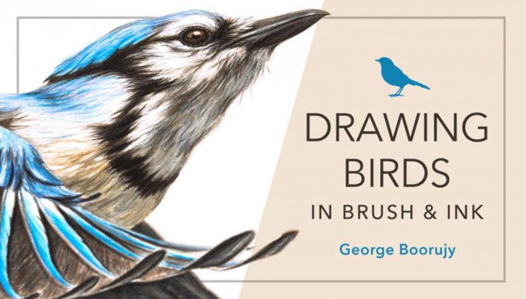 Drawing Birds in Brush & Ink