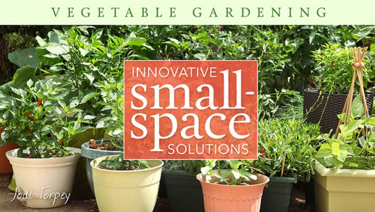 Vegetable Gardening: Innovative Small-Space Solutions