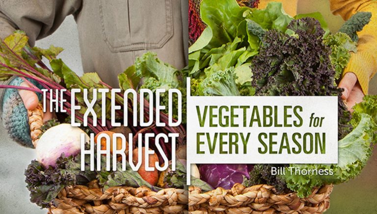 The Extended Harvest: Vegetables for Every Season