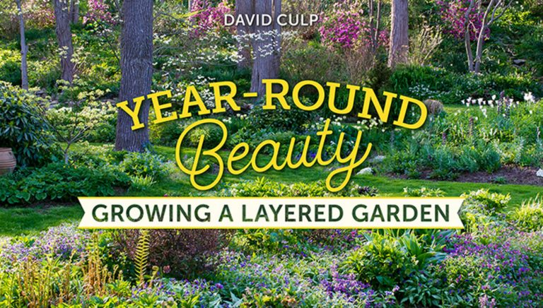 Year-Round Beauty: Growing a Layered Garden