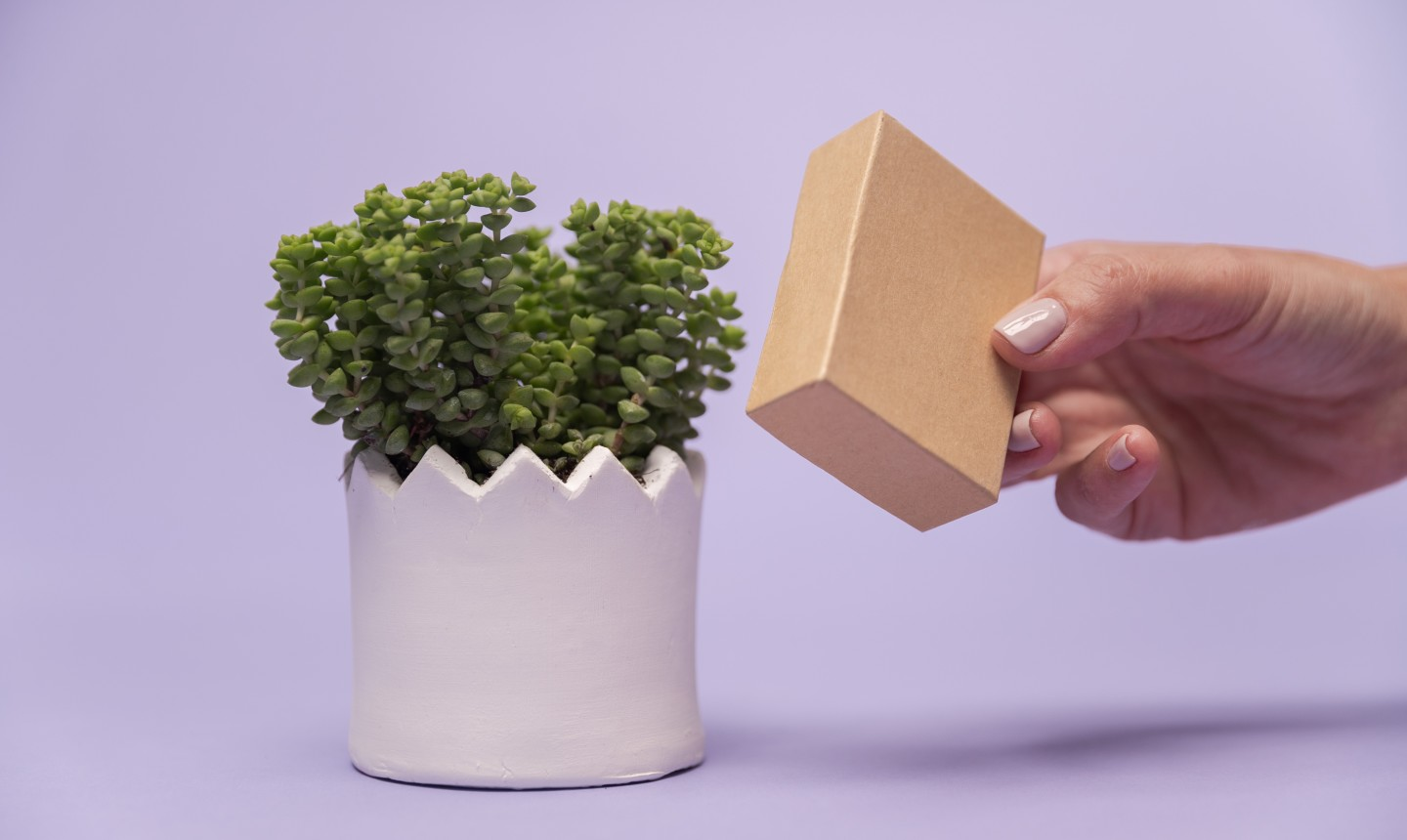 Creating an effect on the clay with a box