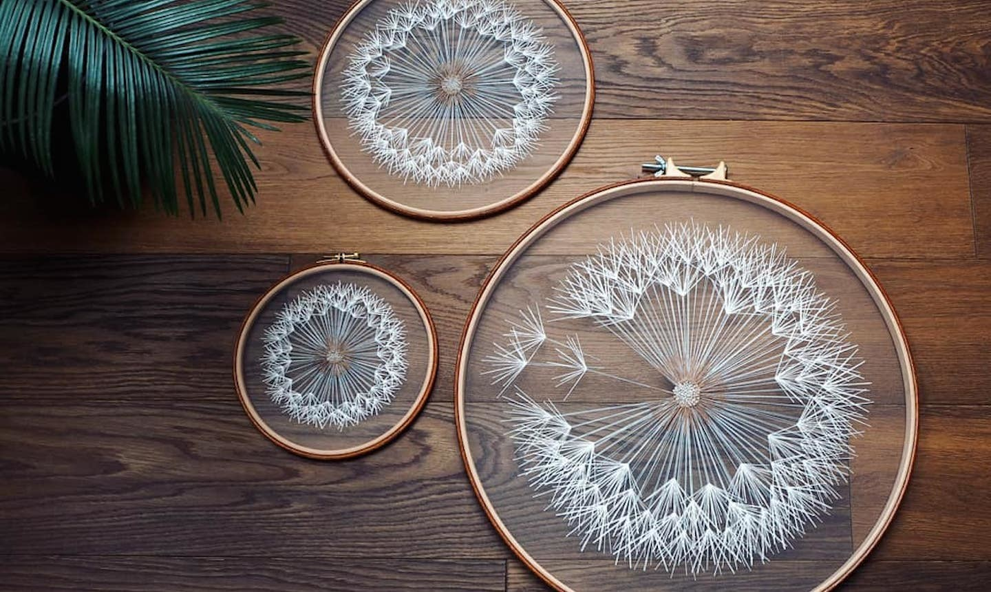 sheer embroidered dandilions
