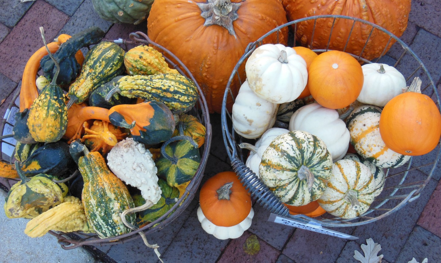 buckets of gourds