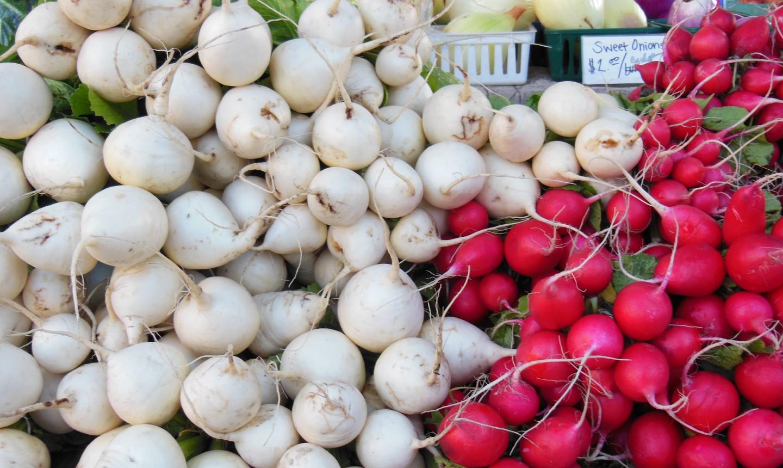 pile of radishes