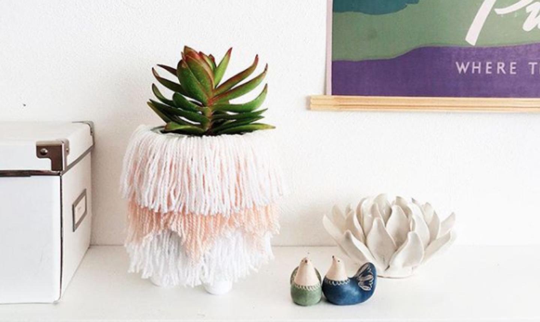 fringe succulent planter