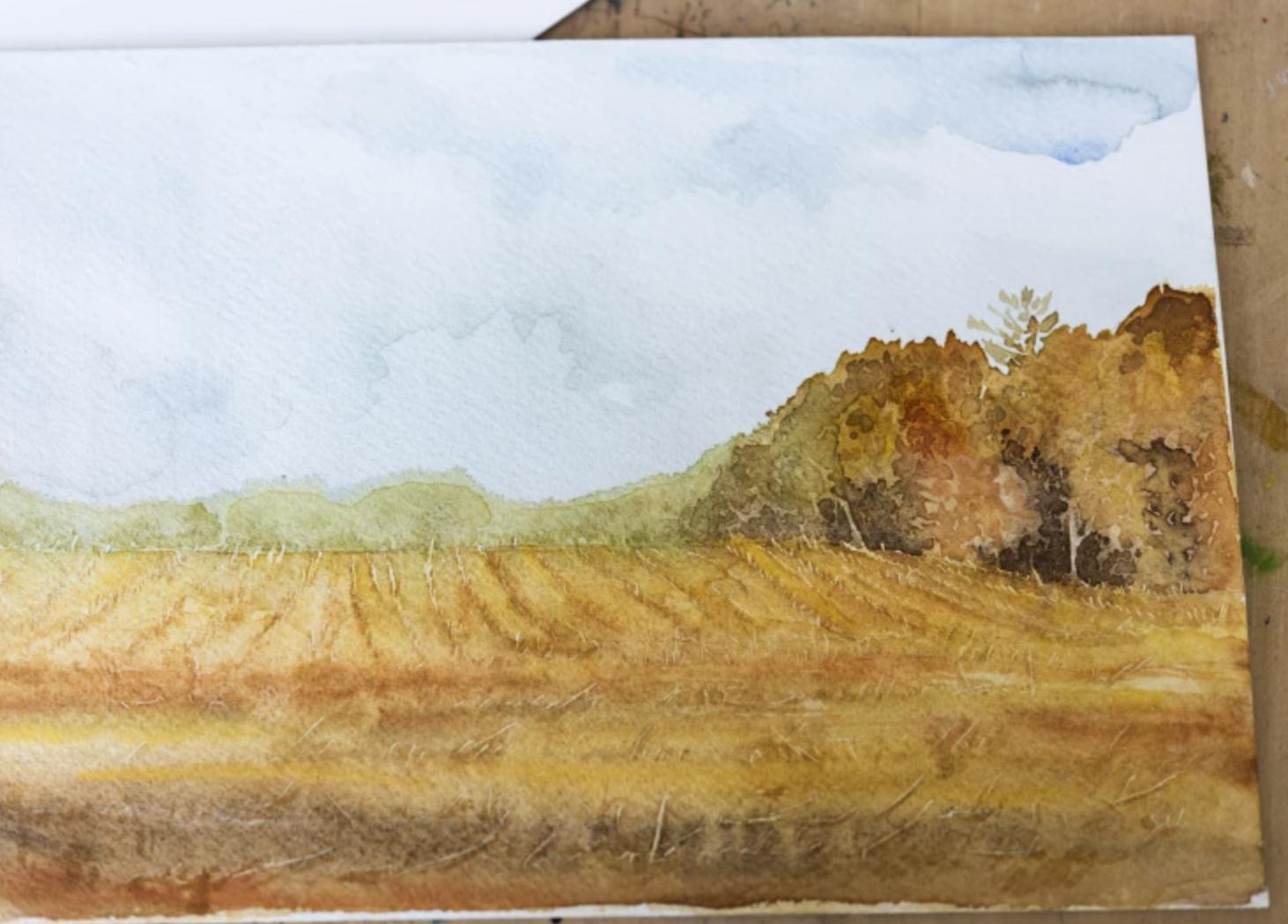 autumn cornfield