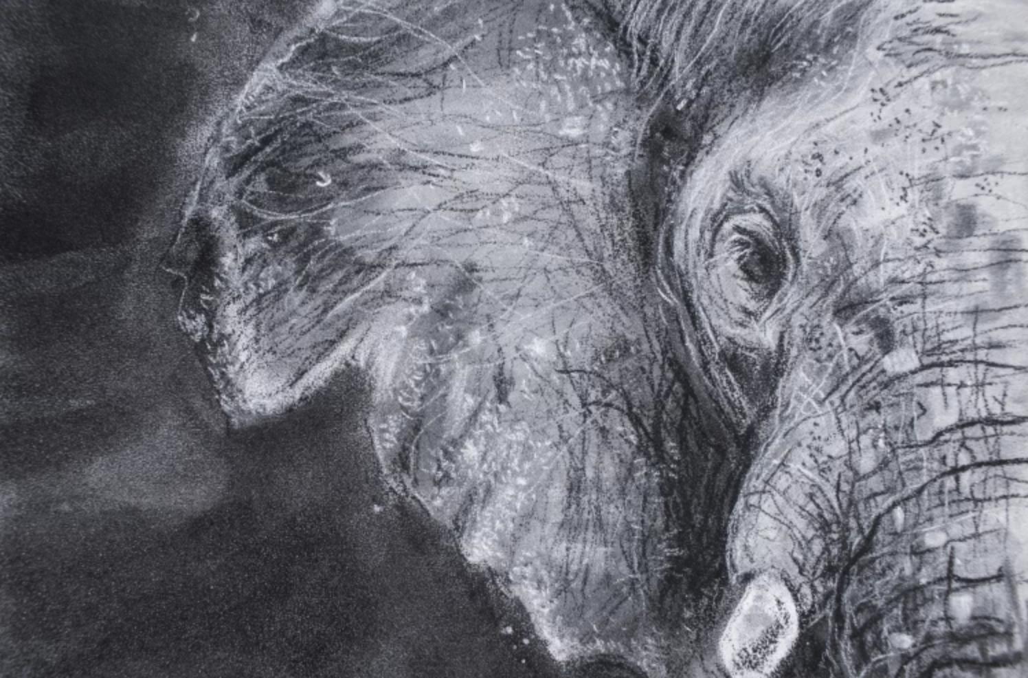 charcoal elephant