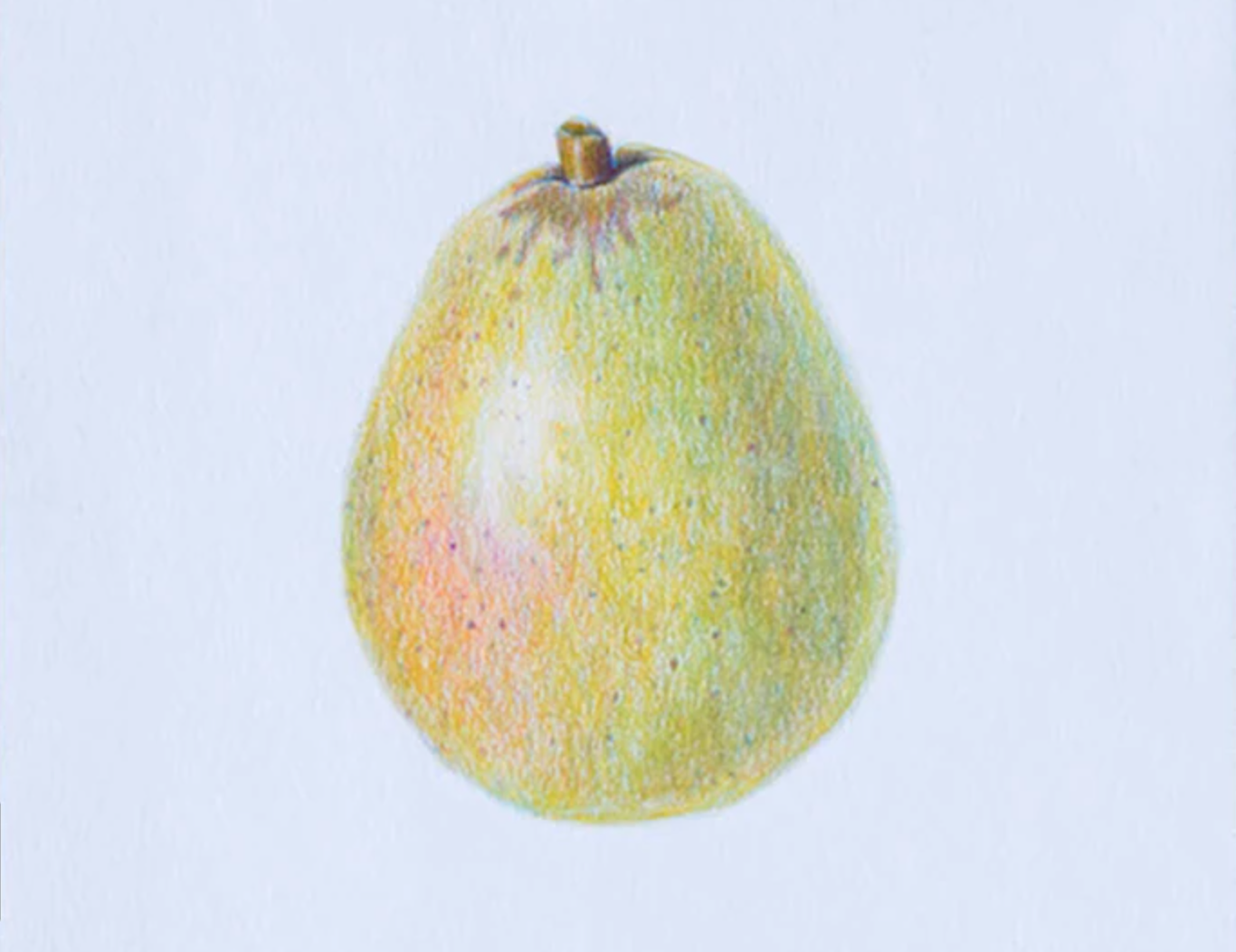 colored pencil pear