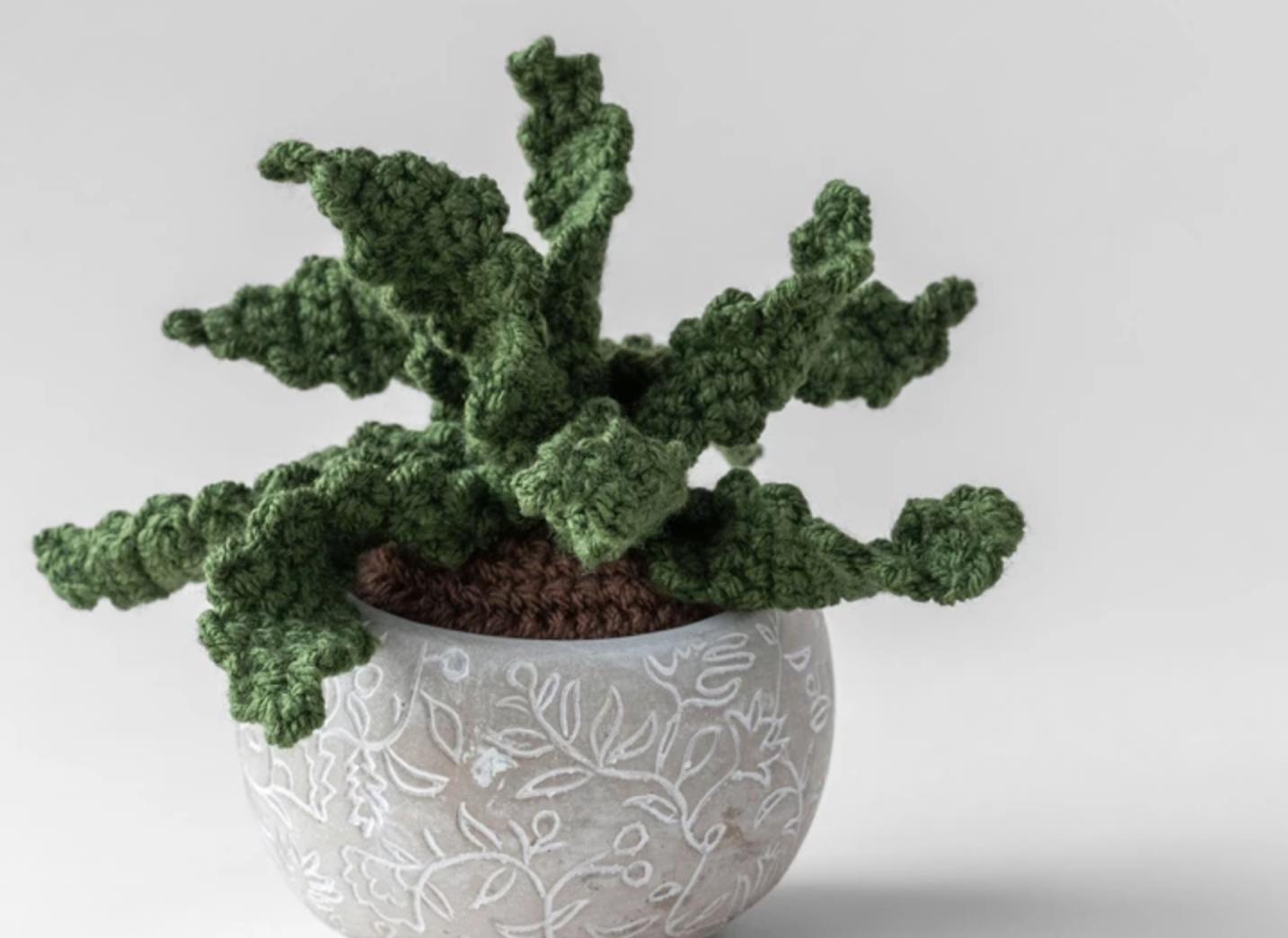 crochet aloe plant