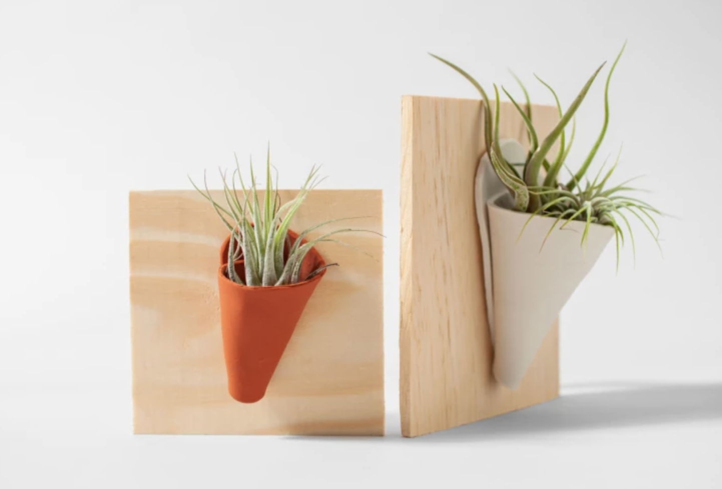 wood and clay succulent holder